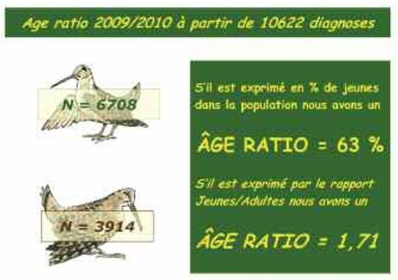 bilan07